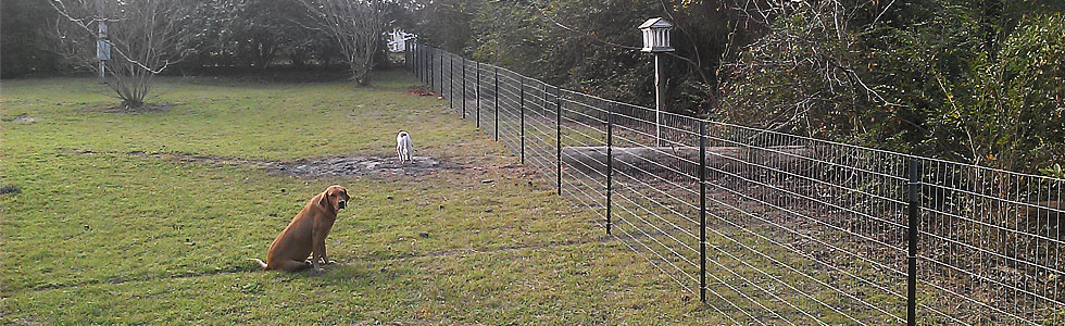 Crosby Fence Privacy Fence Wrought Iron Corral Split